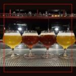 Selección de cervezas artesanales para degustar